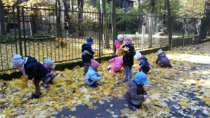 ,,kolorowe liście łap,, (2)